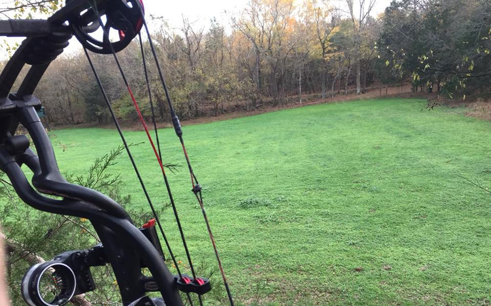bow hunting over green field